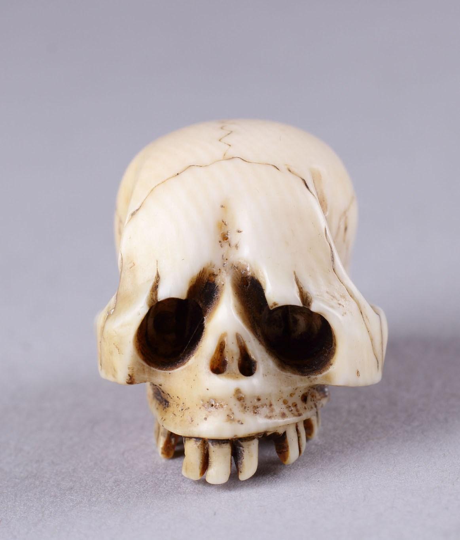 Hand Carved Japanese Boxwood Netsuke Skull Head Skeleton Cranium Wood Color